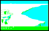 Koori