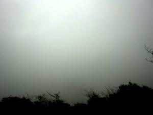 亀老山展望公園・霧