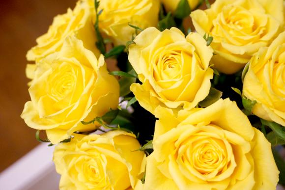 今年のバラ。毎年5月に贈ってくれます^^