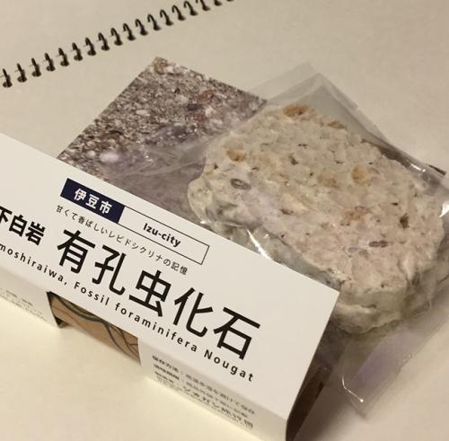 有孔虫化石ココナッツヌガー~甘くて香ばしいレピドシクリナの記憶:伊東市