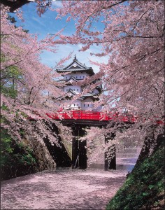弘前城と桜と下乗橋