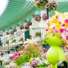 百花繚乱♥港街に100万の花が咲く〜緑化よこはまフェアを楽しむ街歩きプラン